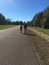 Random Road in Mississippi