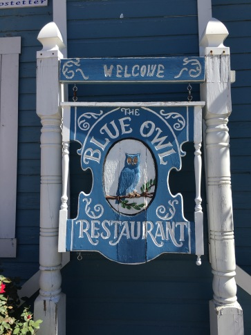 The Blue Owl as seen on TV!