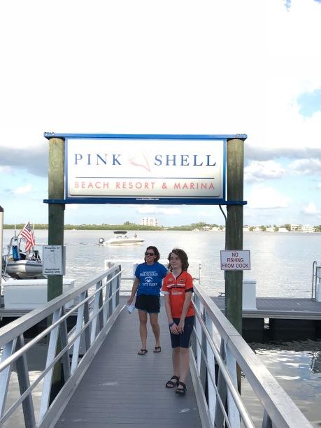 Pink shell docks