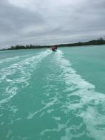 Open water!