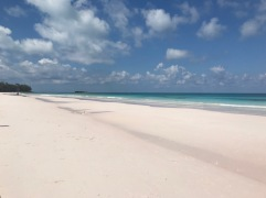 And another pink beach